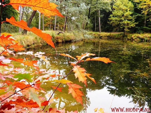 20-10-2012     Wedeblick-   Driebergen        25 Km (162)