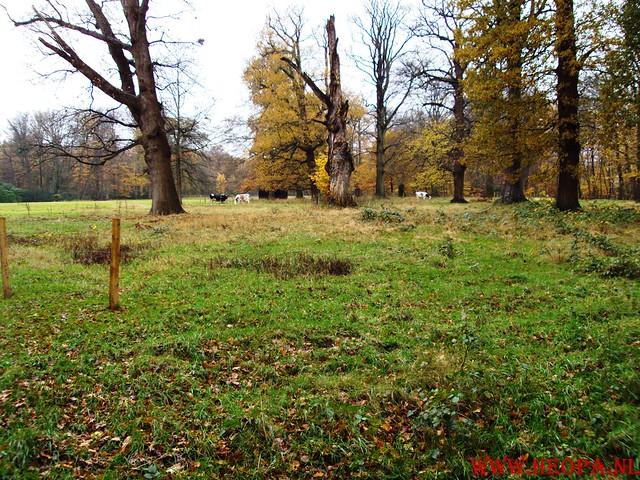 15-11-2009            Gooise lus       18.5 KM    NS Wandeltocht  (11)