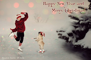 Happy New Year 2015 and Merry Christmas! | by Annabelle Danchee