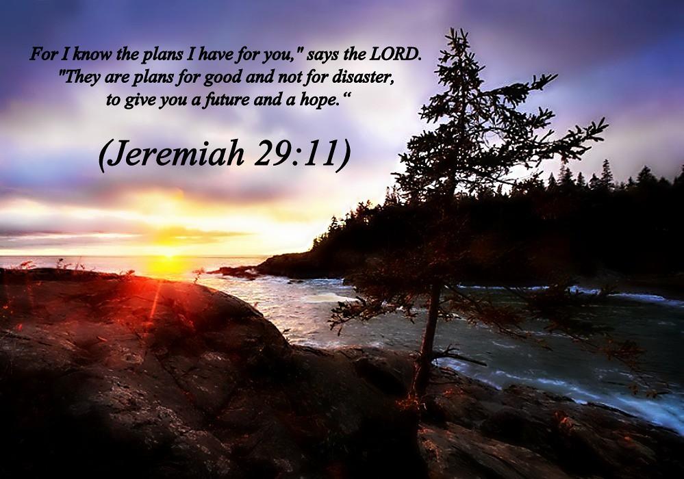 Jeremiah 29:11 nlt