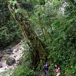 09 Viajefilos en Panama, Valle de Anton 09