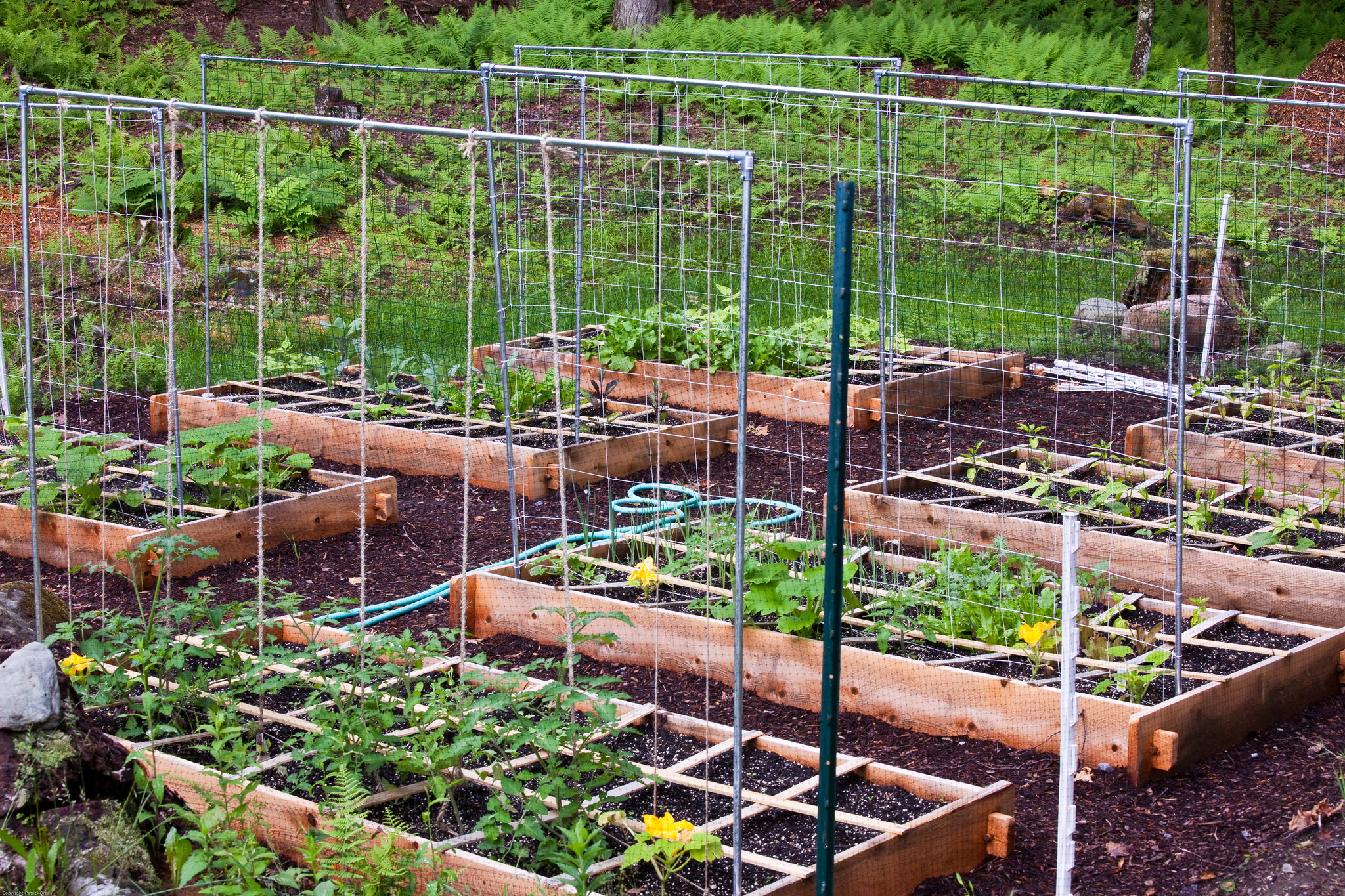 Environmental and Community Horticulture programs