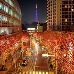 けやき坂イルミ(赤)とパープルライトアップの東京タワー♪*\(^o^)/* もう年末ってことなんですかね〜♪( ´▽`)