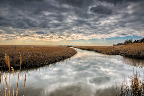 winter nature water nikon hdr d800 marshes forsythenwr 20mm18