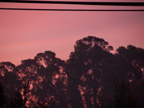 sunrise hayward 2015 dstreet