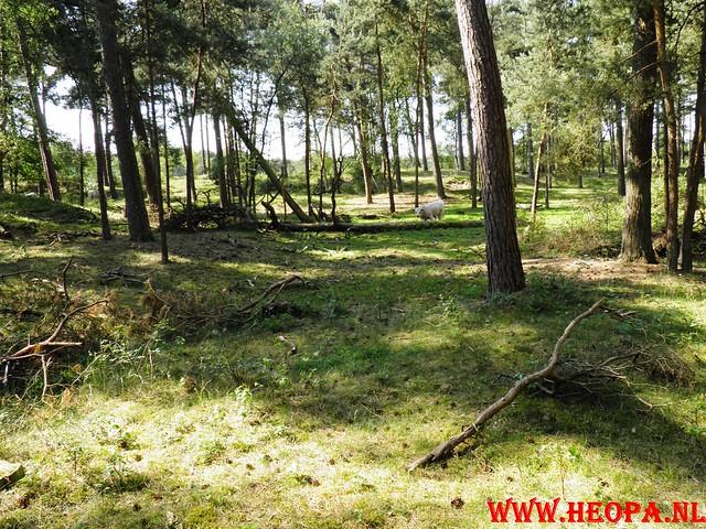 04-056-2011 Baarn 26 Km (38)