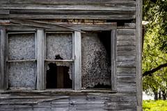 Nobody Home