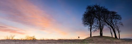 trees sunrise landscape houghton northeast copthill leefilters sevensistrs