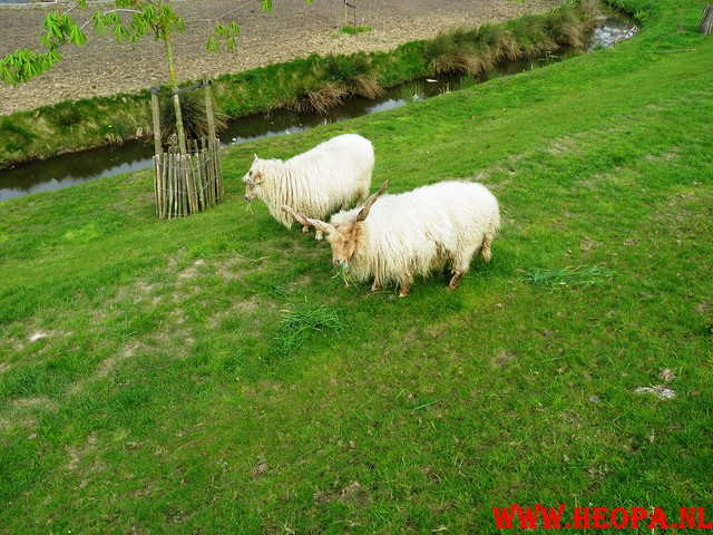 16-04-2011     Rode-Kruis   Bloesem   wandeltocht 26 Km (56)