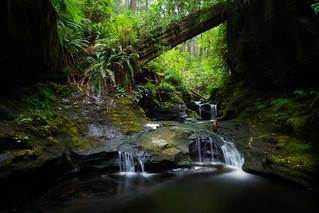 Payzant Falls   by Bryn Tassell