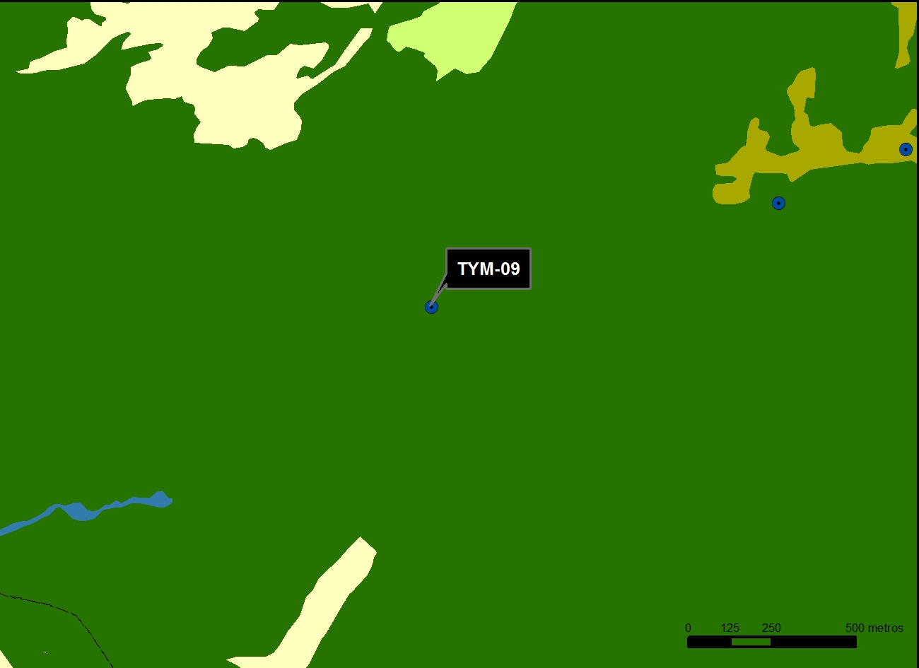 TYM_09_M.V.LOZANO_CANALEJA_MAP.VEG