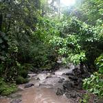 09 Viajefilos en Panama, Valle de Anton 14