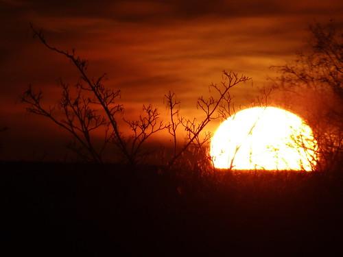 Sonnenaufgang-0390