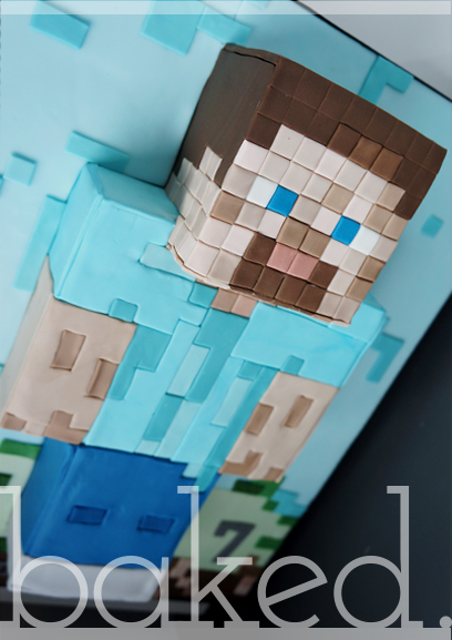 Marvelous Minecraft Steve Cake A Photo On Flickriver Funny Birthday Cards Online Eattedamsfinfo