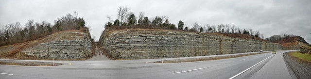 Ordovician strata, rock cut on Highway 109, Sumner County, Tennessee 2