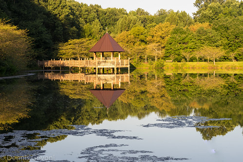 meadowlark gazebo lake lakecaroline landscape quiet reflectingpool summer sunrise water