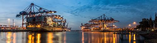 Hamburger Hafen - Burchardkai | by diablopb