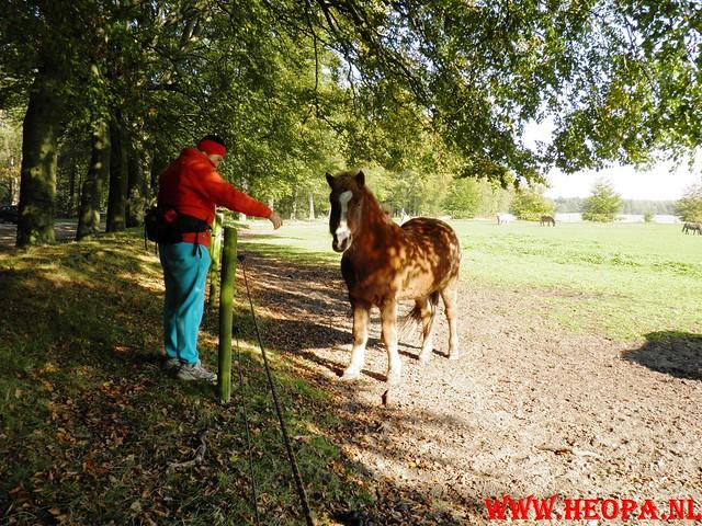 22-10-2011             Driebergen         26 km (131)