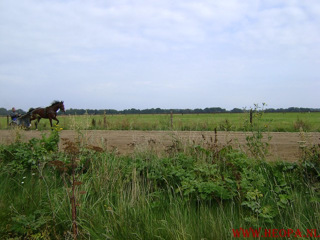 Assen             20-09-2008      28.2 Km (43)