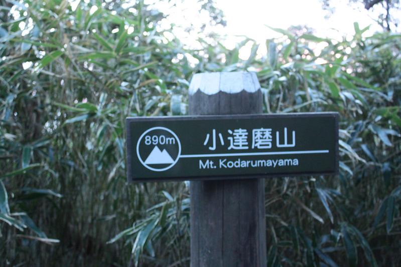 2014-03-31_00510_伊豆稜線トレイル.jpg