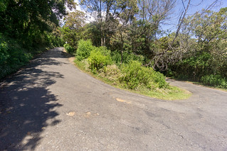 Road to the Horton Plains | by seghal1