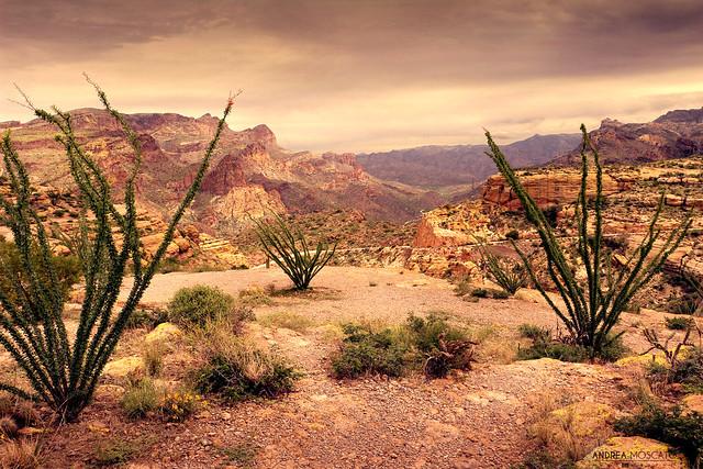 Apache Trail Scenic Drive, Arizona