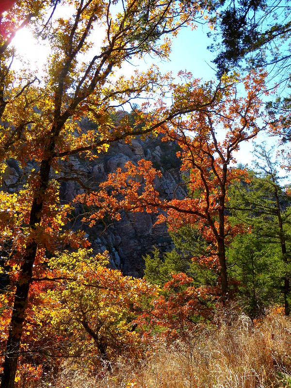 Fall Colors in the Wichitas