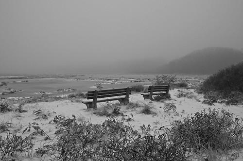 winter bw monochrome fog bench maine newengland wells marsh harborroad webhannetriver