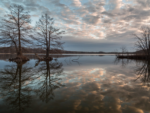 morning trees winter sky lake nature water clouds reflections landscape dawn pond february canon24105mmf4l buschwildlife canon5dmkiii