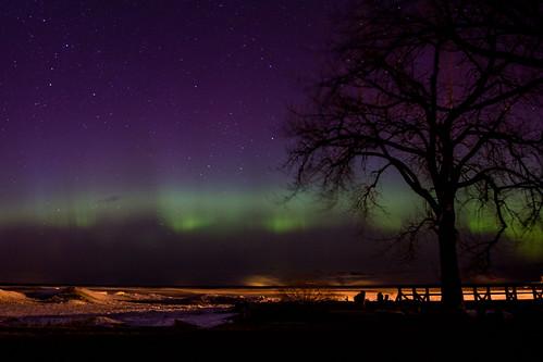 Frigid northern lights   by darosenbauer