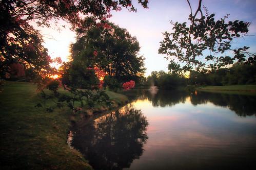 dorameulman dogdayafternoon summer august sunset landscape lake heatherlock gastonia northcarolina