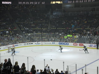 Pittsburgh Penguins Hockey Game 1/3/15