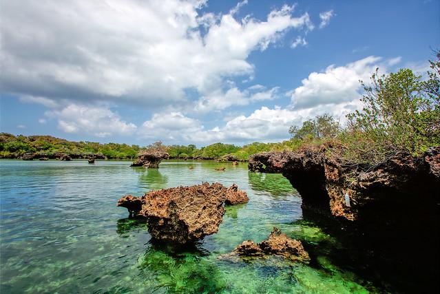 Safari Blue lagoon