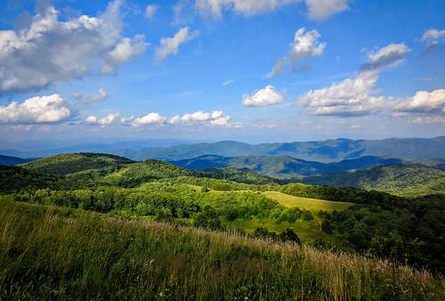 summer green asheville maxpatch