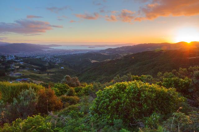 Evening's glow over Wellington
