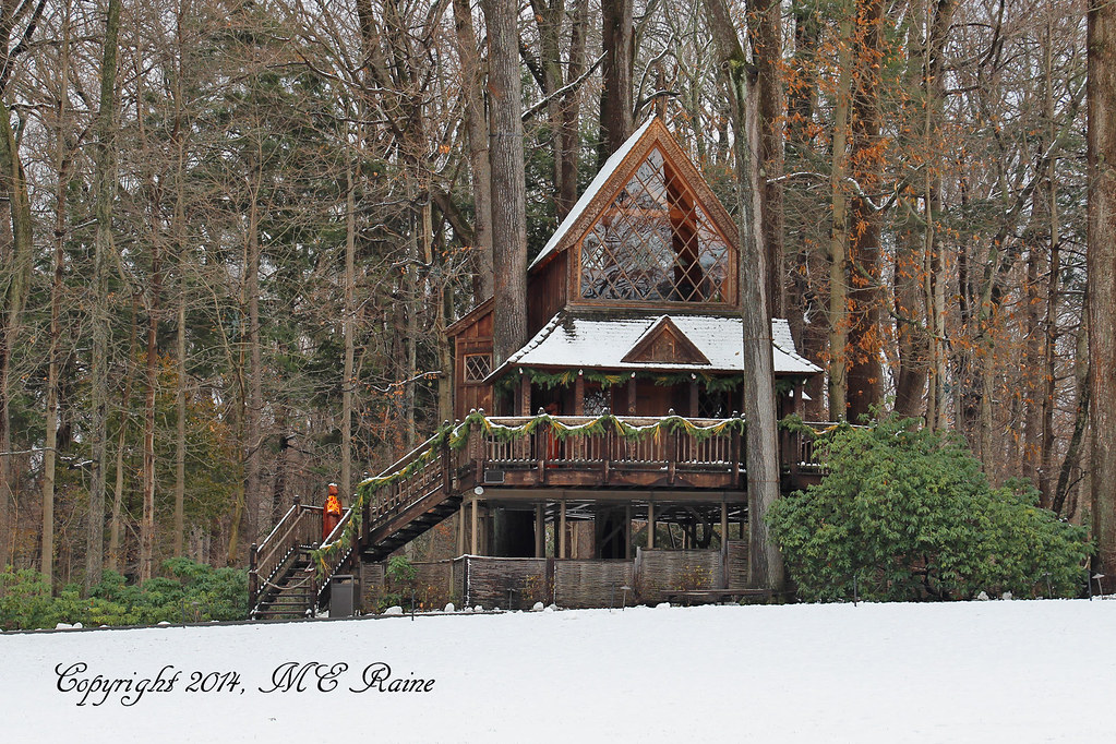 Christmas Special 2014 Canopy Cathedral Treehouse At Longw Flickr