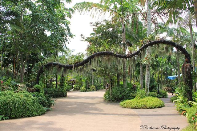Singapore Birds' Park