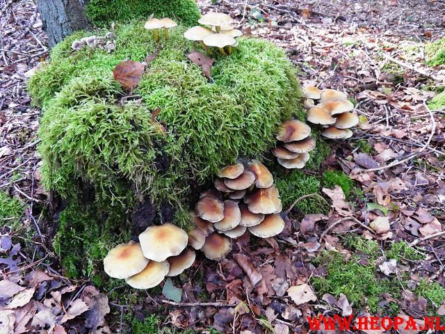 22-10-2011             Driebergen         26 km (145)