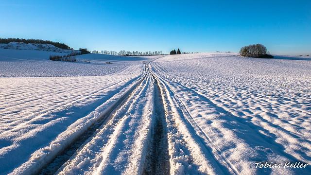 Feldweg im Schnee
