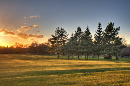 uk blue trees sunset england green yellow forest golf warm westsussex golfcourse dreamy puestadesol heavenly hdr highdynamicrange crawley buchancountrypark 52weeksproject week1052 kevincamacho