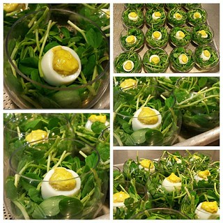 Cooking Class: Spring Forward