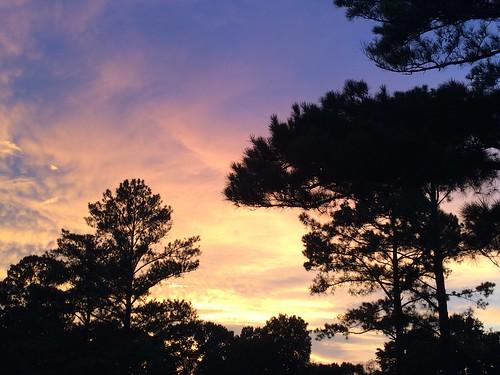 sunset tuscaloosa alabama
