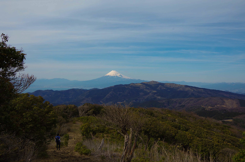 2014-03-31_00584_伊豆稜線トレイル.jpg
