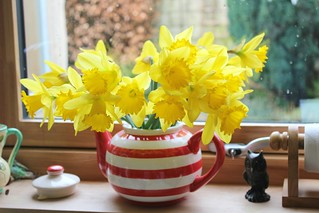 daffs in a teapot!   by my little red suitcase