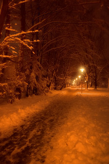 Snow lamps | by Tomislav C.
