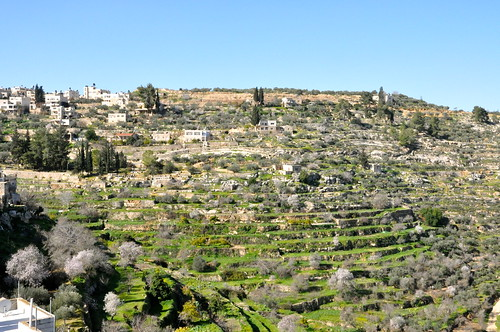 Village of Battir, UNESCO World Heritage Status for its 4,000-year-old pe-roman (Canaanite) irrigation system | by Travel2Palestine