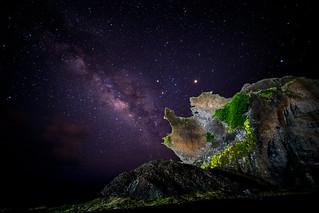 BB4I3326 | by Venus Optics - Laowa