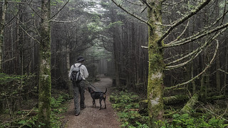 1st Place - People on the Trail - Jeff Clark - A Man and His Hound | by Mountains-to-Sea Trail Photo Contest