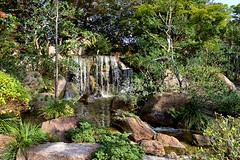 Morikami Japanese Gardens and Museum 2, Delray Beach, Florida. Nikon D3200. DSC_0731.