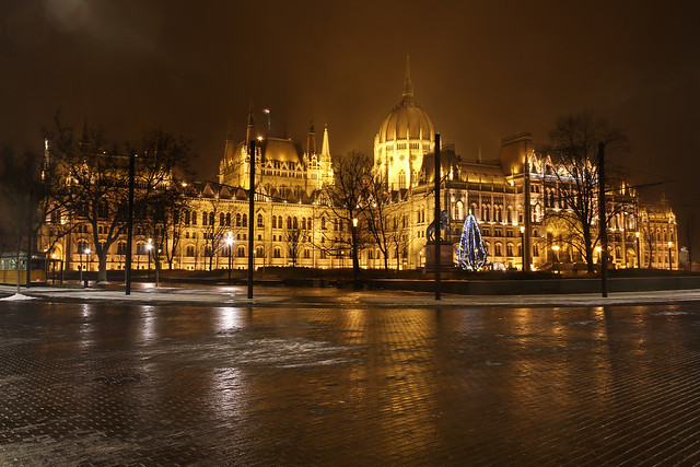 Hungarian Parliament with christmas tree at night
